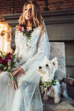 домашние любимцы на свадьбе, фото