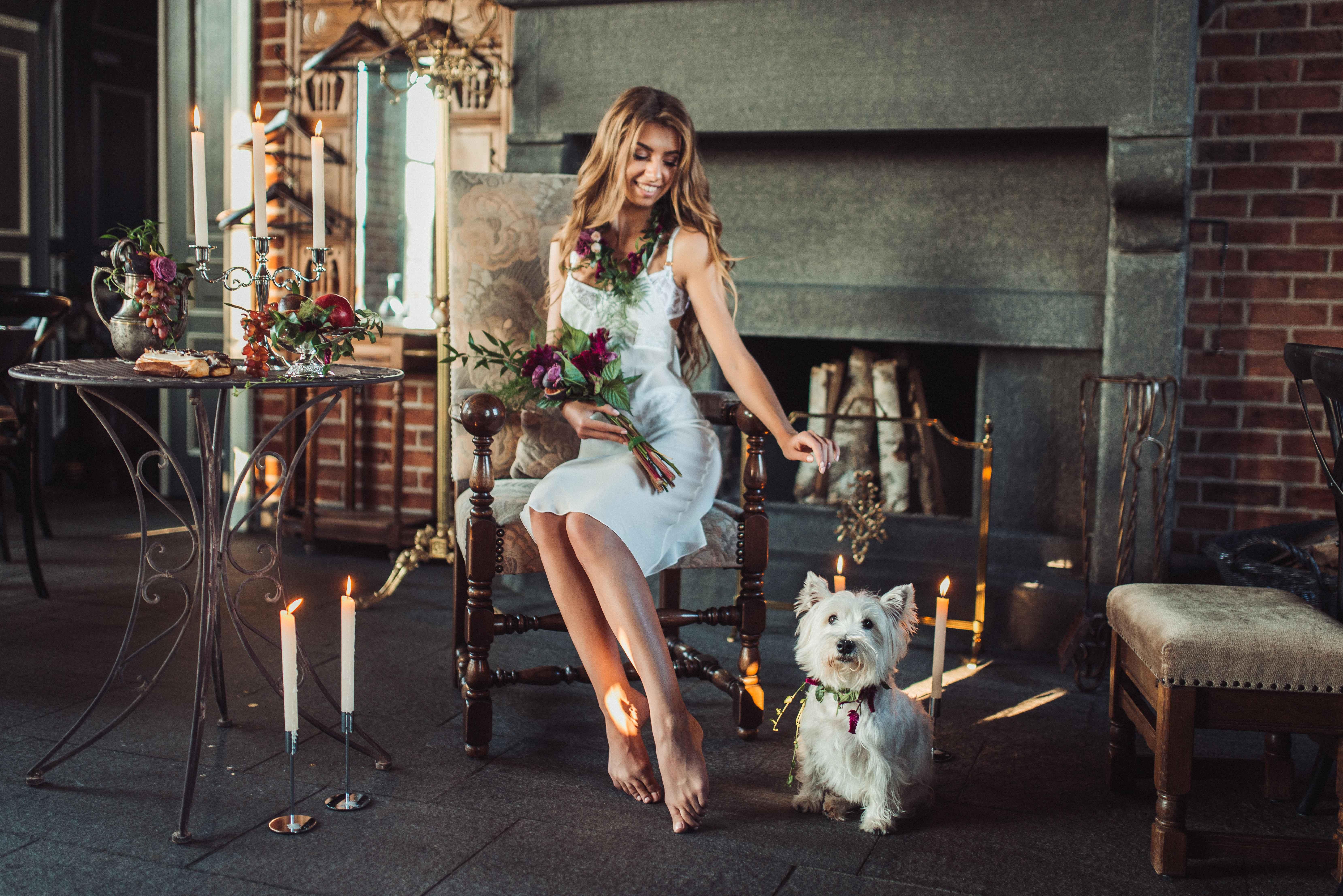 образ невесты, утро невесты, собака