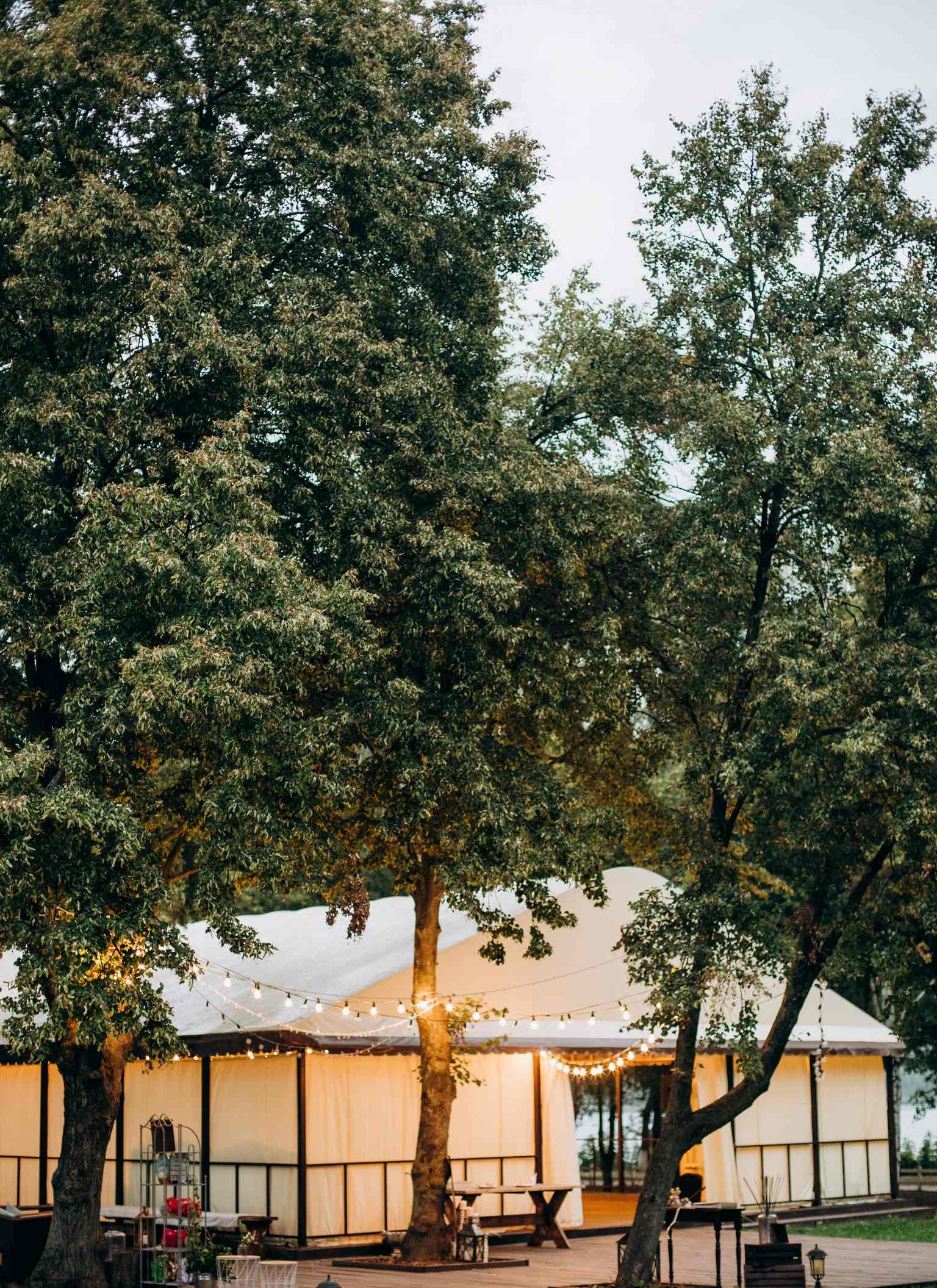свадьба в шатре, Киевская область