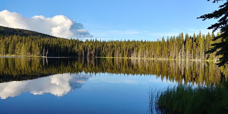 Lake scene open, OKNGN.jpg