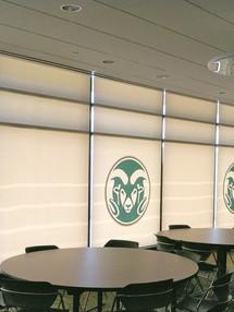 Custom Printed Interior Office Shades