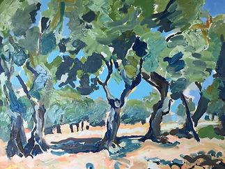 Naxos Olives