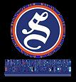 DSF_Logo_PMS_V_PMS.png