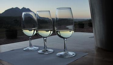 cellar glasses.jpg