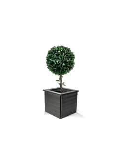planter with bush_edited