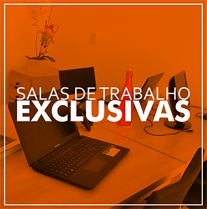 SALA EXCLUSIVA - SITE.png