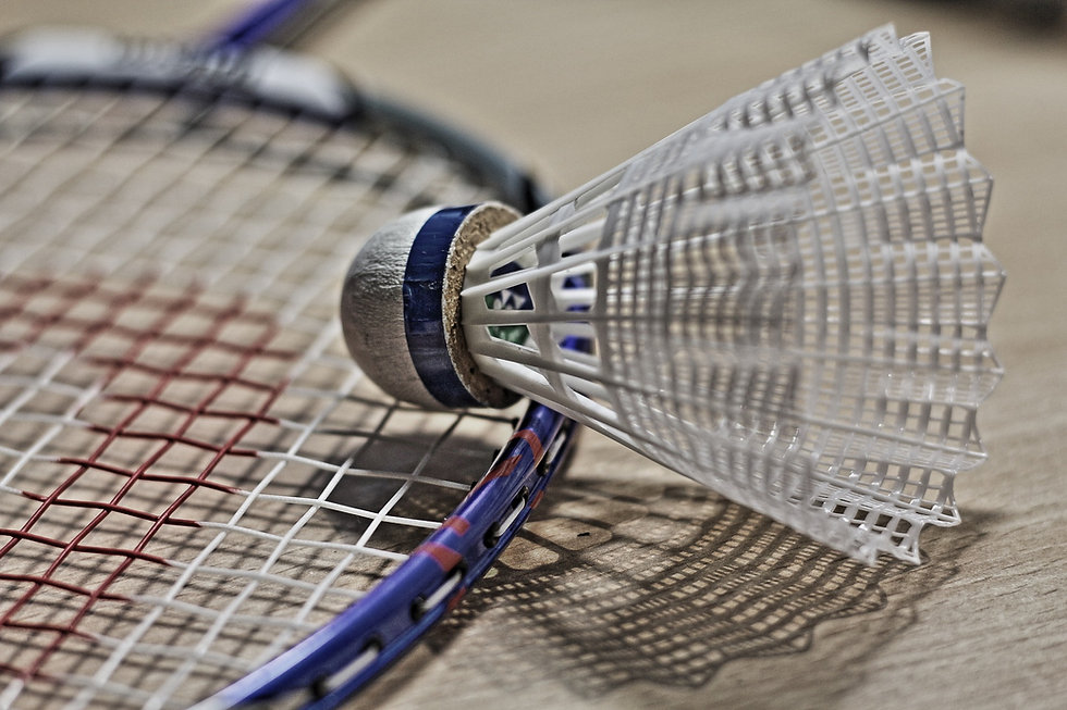 badminton-1019110_1920.jpg