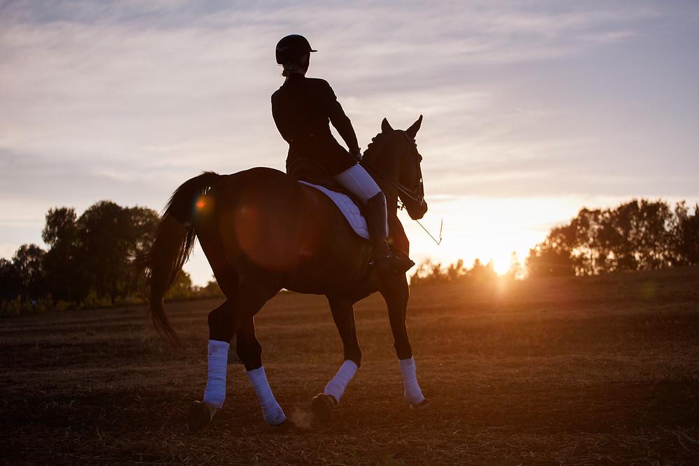 Dressage Blog - Beating Horseback Riding Burnout