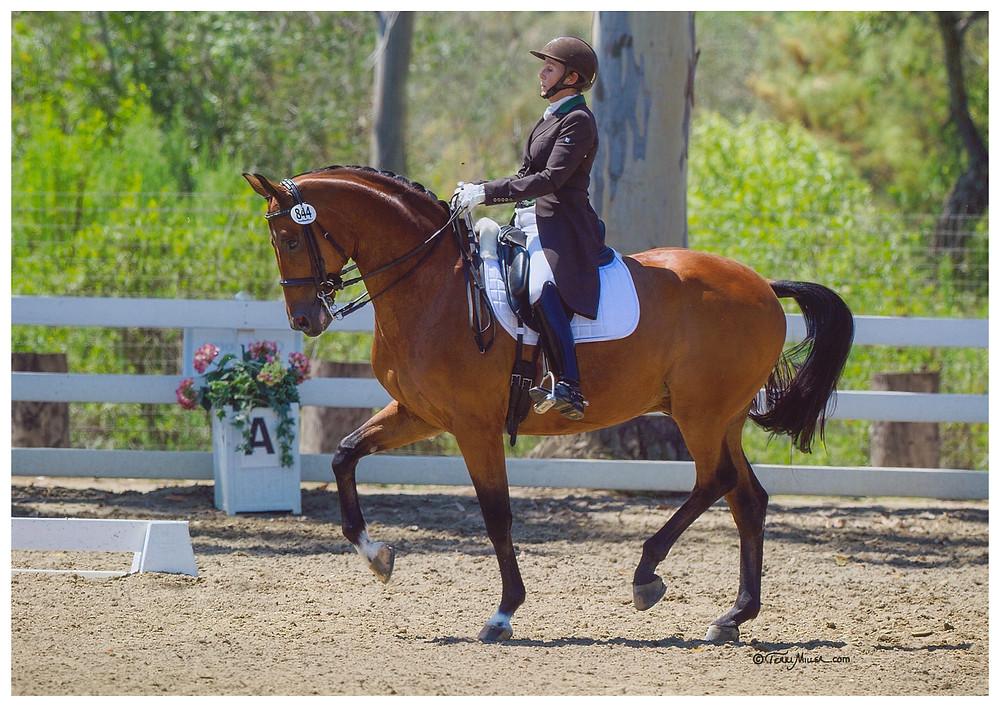 Terri Rocovich Rides Grand Prix Dressage Uiver