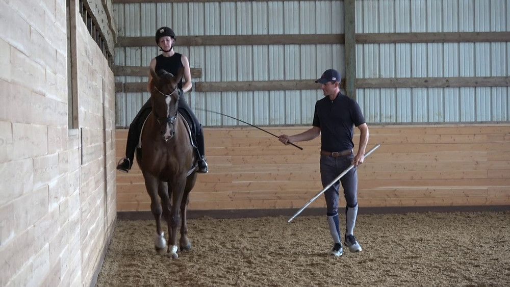 In hand dressage trainer, Joseph Newcomb, works with a student.