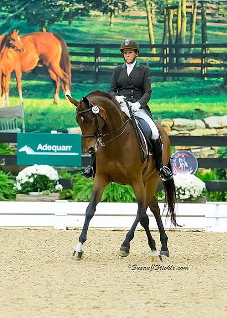 Terri Rocovich Rides Grand Prix Dressage Horse Uiver