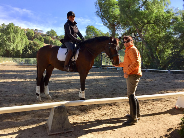 'Vintage Riders' Prove Dressage Gets Better With Age