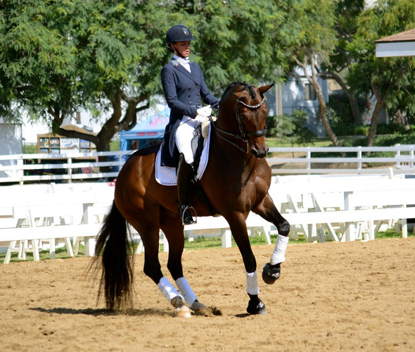 It Takes A Village: How Dawn White-O'Connor Earned The Reins To Olympic Mount Legolas