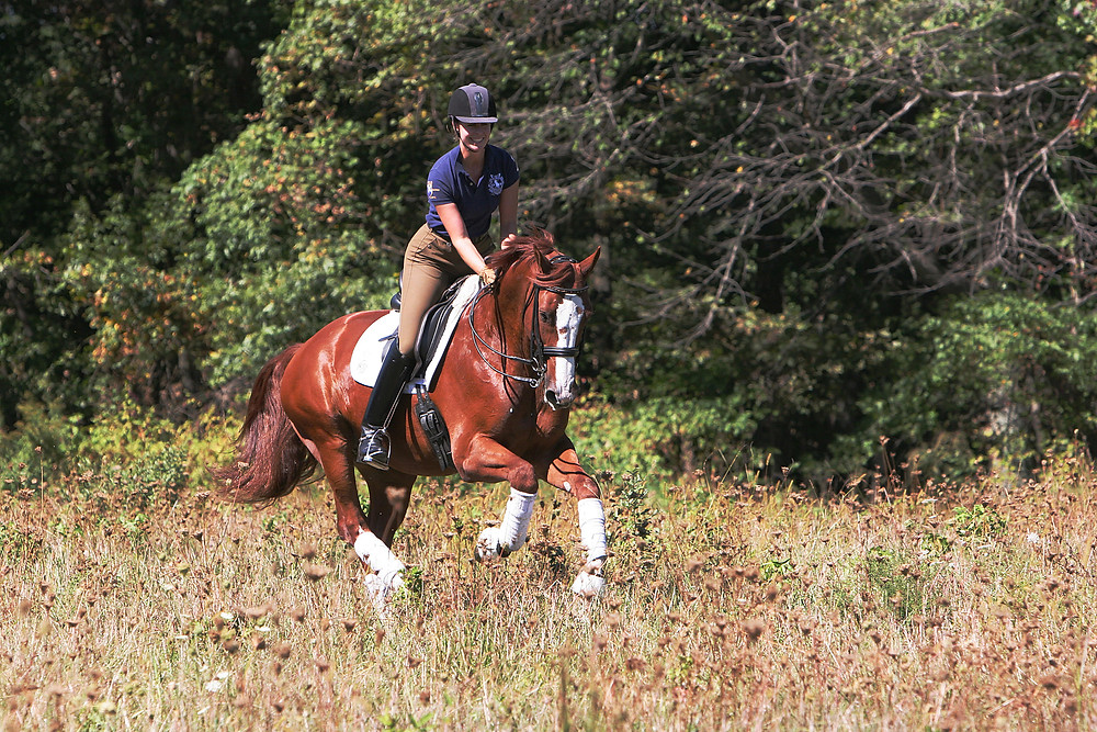 Jessica Jo (JJ) Tate riding in an open field. Photo by Richard Malmgren