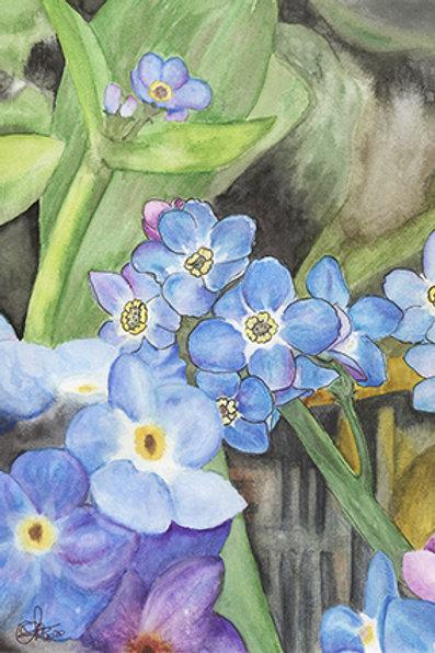 Dessin Fleurs Sauvages