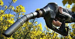 curso bio combustibles