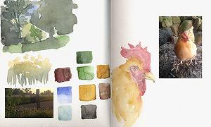 coco-connolly-everwood-farmstead-sketchb