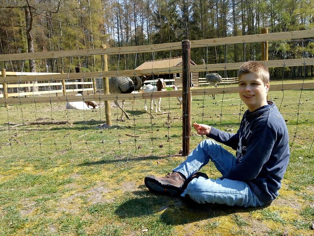 Bewoner met gedrags- en emotionele stoornissen zit voor een dierenweide