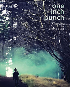 ref=nb_sb_ss_i_1_15_k=one+inch+punch+