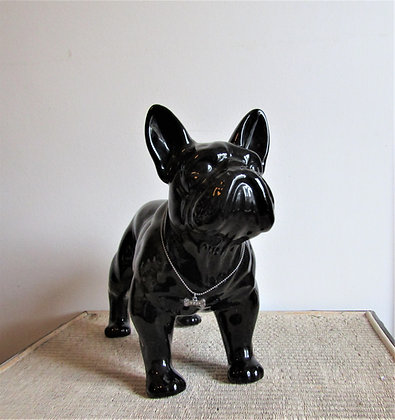 Large French Bulldog