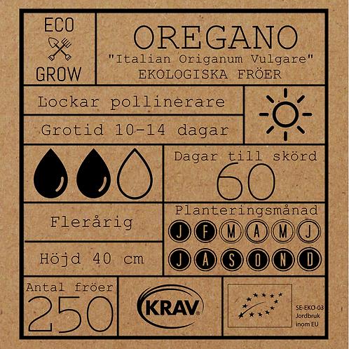 """Oregano """"Italian Origanum vulgare"""""""