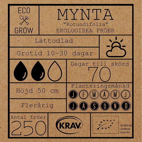 "Mynta ""Rotundifolia"""