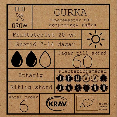 """Gurka """"Spacemaster 80"""""""