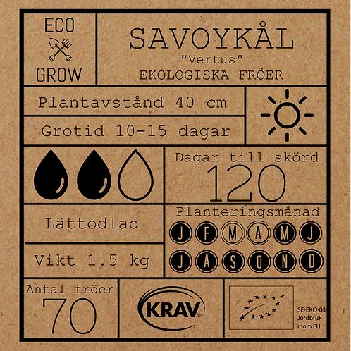 """Savoykål """"Vertus"""""""