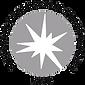 2020 Guidestar Silver Seal