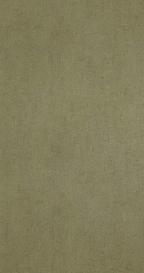 218512 - Hosta