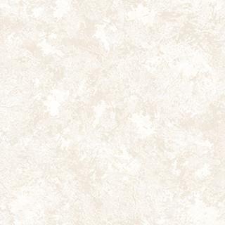 54243-3.jpg