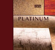 PLATINUM (MARBURG)