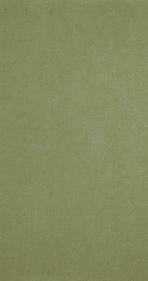 48474 - Cypress