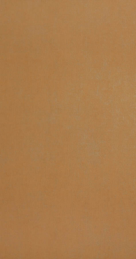 218507 - Cinnamon