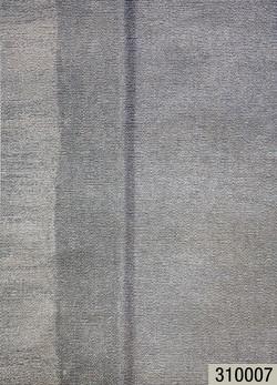 310007.jpg