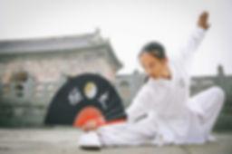 Kungfu Fan