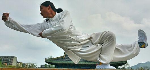 advanced kungfu
