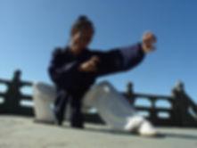 master yuan dragon