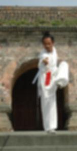 master yuan sword