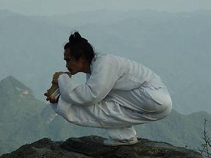 master yuan stretching