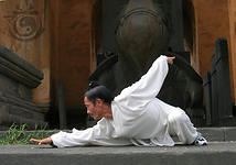 master yuan snake