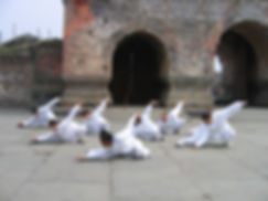 Five Animals Qigong