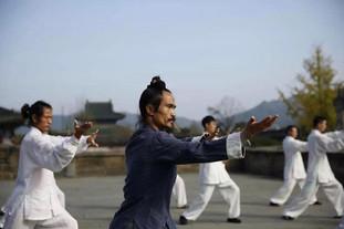 Master Yuan TaiJi 13