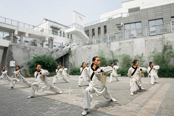 Shan Shui Jie