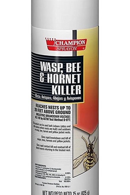Wasp, Bee and Hornet Killer