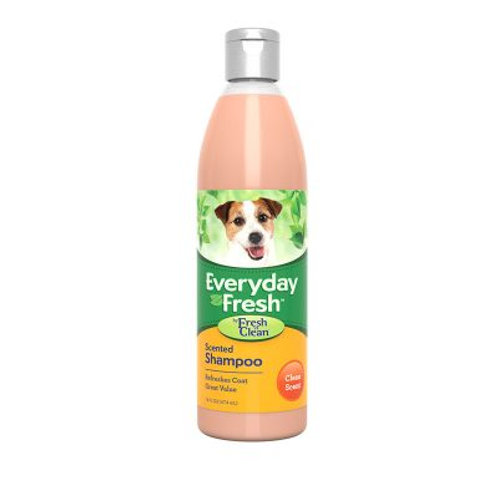 Everyday Fresh Scented Shampoo