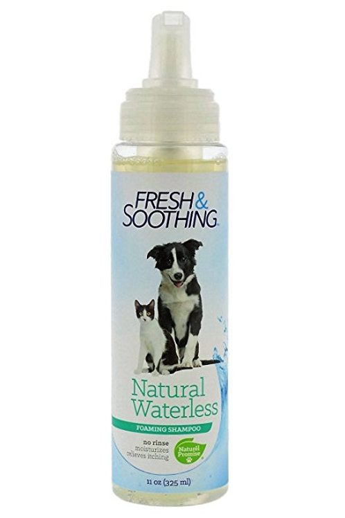Fresh and Soothing Natural Waterless Shampoo