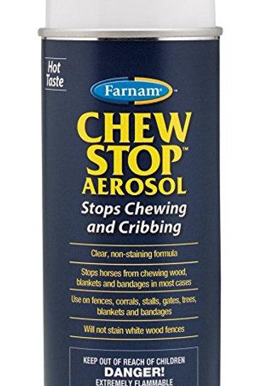 Chew Stop Earosol