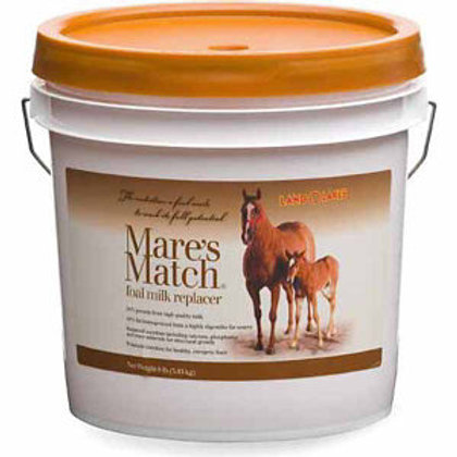 Mares Match Milk Replacer