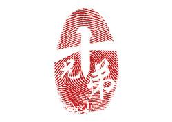Ten Brothers_Logo